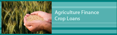Agriculture Finance Crop Loans - Crop Loan with Kisan Credit Card